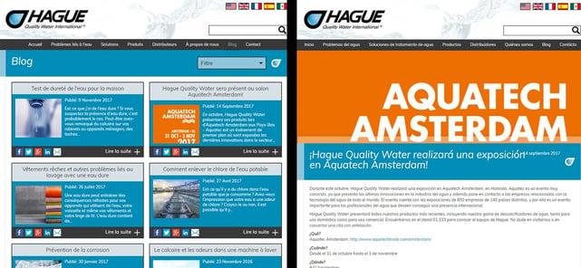 Hague blog images combined v2.jpg