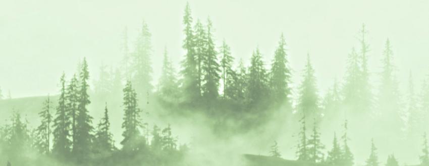 Lower Banner Trees