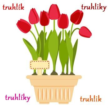 flower pot keywords.jpg